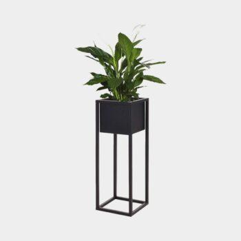 HomeTrends-Blumenküdel-metall-schwarz-quadratisch-pflanze